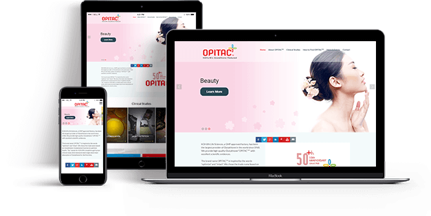 Custom MEAN Development Service