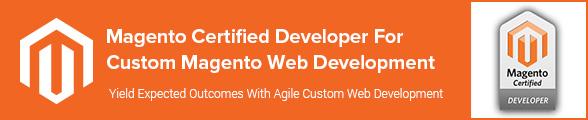 Magento Certified Developer For Custom Magento Web Development