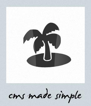 psd to cms made simple