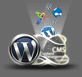 How to choose right CMS Solution?