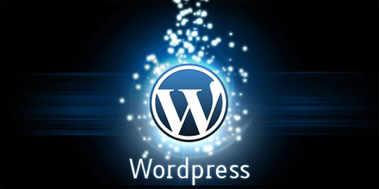 Hire Outsource PSD to WordPress Developer