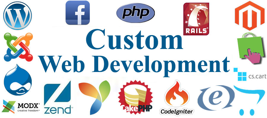 Image result for Custom Website Development