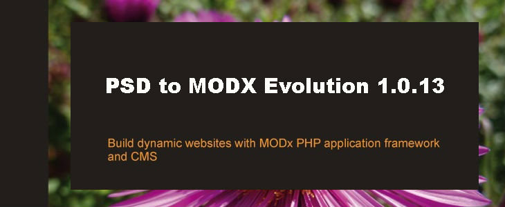 PSD to Modx Evolution