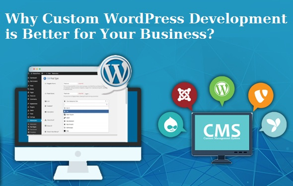 Why Custom WordPress Development is Better for Your Business?