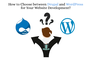 How to Choose between Drupal and WordPress for Your Website Development?